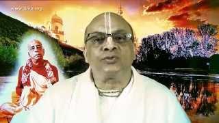 TOVP - Srila Prabhupada