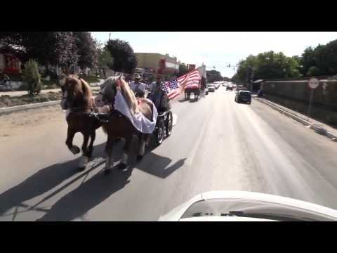 NICOLAE GUTA - NUNTA DE 7 STELE [Official Video]