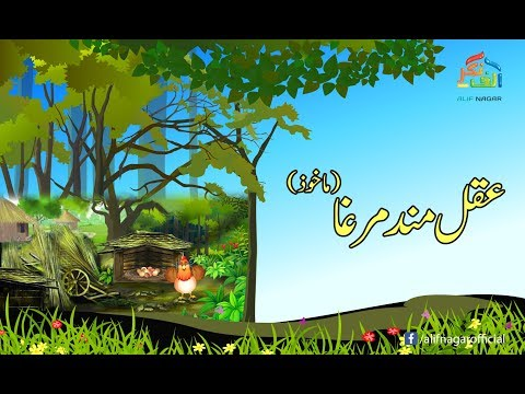 Urdu Kahaniyan | Aqalmad Murgha کہانیاں | عقلمند مرغا ۔ thumbnail