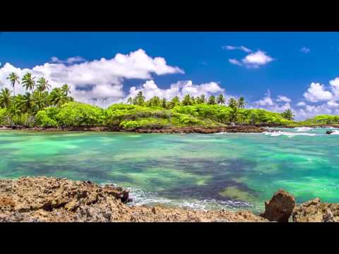 8 Hours of Relaxing Music - Peaceful Background Video for Home and Office