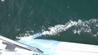 Video Bavaria Cruiser 32 (Bruce Farr) download MP3, 3GP, MP4, WEBM, AVI, FLV Agustus 2018