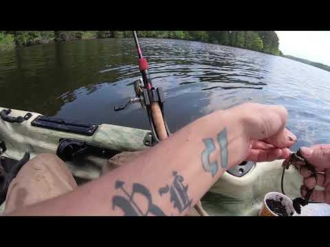 (EP:2) Jordan Lake Fishing - Catfish / Bass EVERYWHERE