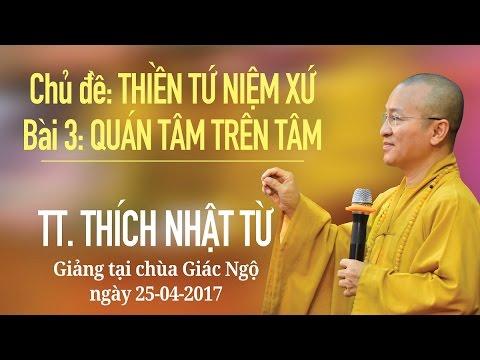 Thiền Tứ Niệm Xứ - Phần 3: Quán Tâm trên Tâm - TT. Thích Nhật Từ