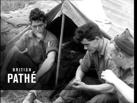 Pacific Rendezvous (1950)