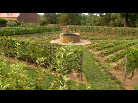 How To Layout Vegetable Garden