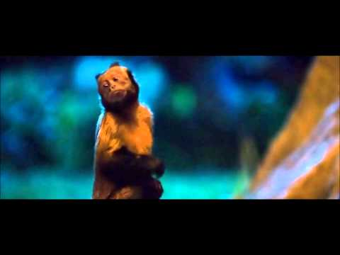 Zookeeper - Its all about the thumbs baby (HD)