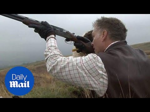 Grouse shooting party on moorland near the Forest of Bowland - Daily Mail