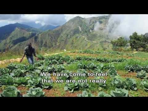 Haiti and Agriculture