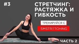 Стретчинг: Упражнения на растяжку и гибкость для начинающих, часть 2 |  SM Stretching