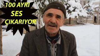100'ü Aşkın Hayvan Sesi Çıkaran 'Kedi Mustafa'