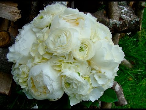 white and green ranunculus and hydrangea bouquet - Garden Rose And Hydrangea Bouquet