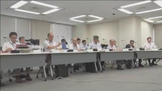 第601回原子力発電所の新規制基準適合性に係る審査会合(平成30年07月17日)