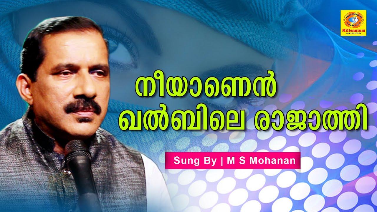 നീയാണെന് ഖല്ബിലെ രാജാത്തി    M S Mohanan   Mappilapatte Album 2020   Bappu Velliparambe