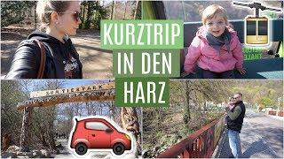 FAMILIENURLAUB in den HARZ ❘ Seilbahn  & Tierpark ❘ MsLavender