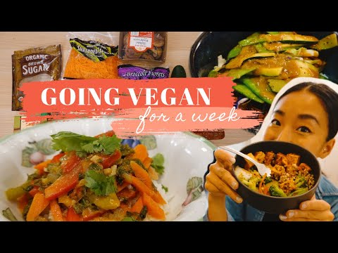 going vegan | what i eat in a week