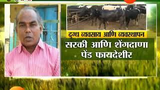 पीकपाणी । दुग्ध उत्पादकाने गाय घ्यावी की म्हैस ?