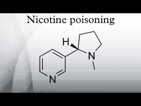 how to make a nicotine insecticide