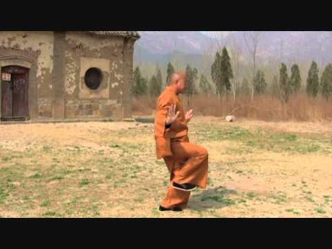 Shaolin Wugulun Kungfu - Lesson 2: Twisting Root