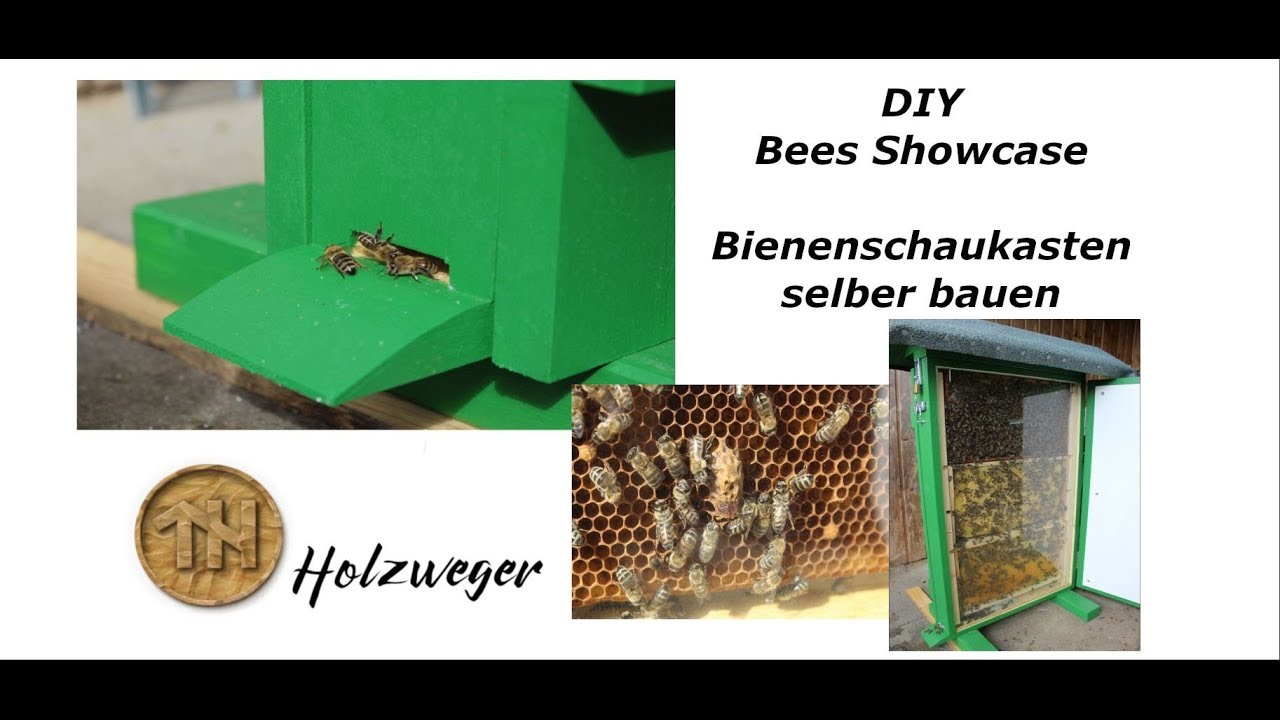 bienen bienenschaukasten selber bauen diy helmchen youtube. Black Bedroom Furniture Sets. Home Design Ideas