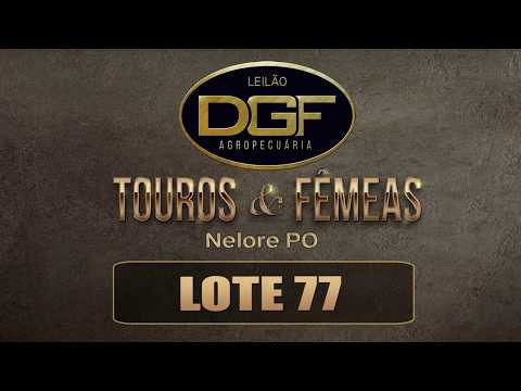 LOTE 77