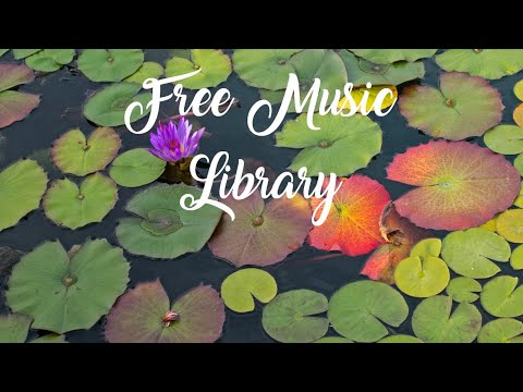 Royalty Free Music Library ♫ Transparent - Peter Rudenko