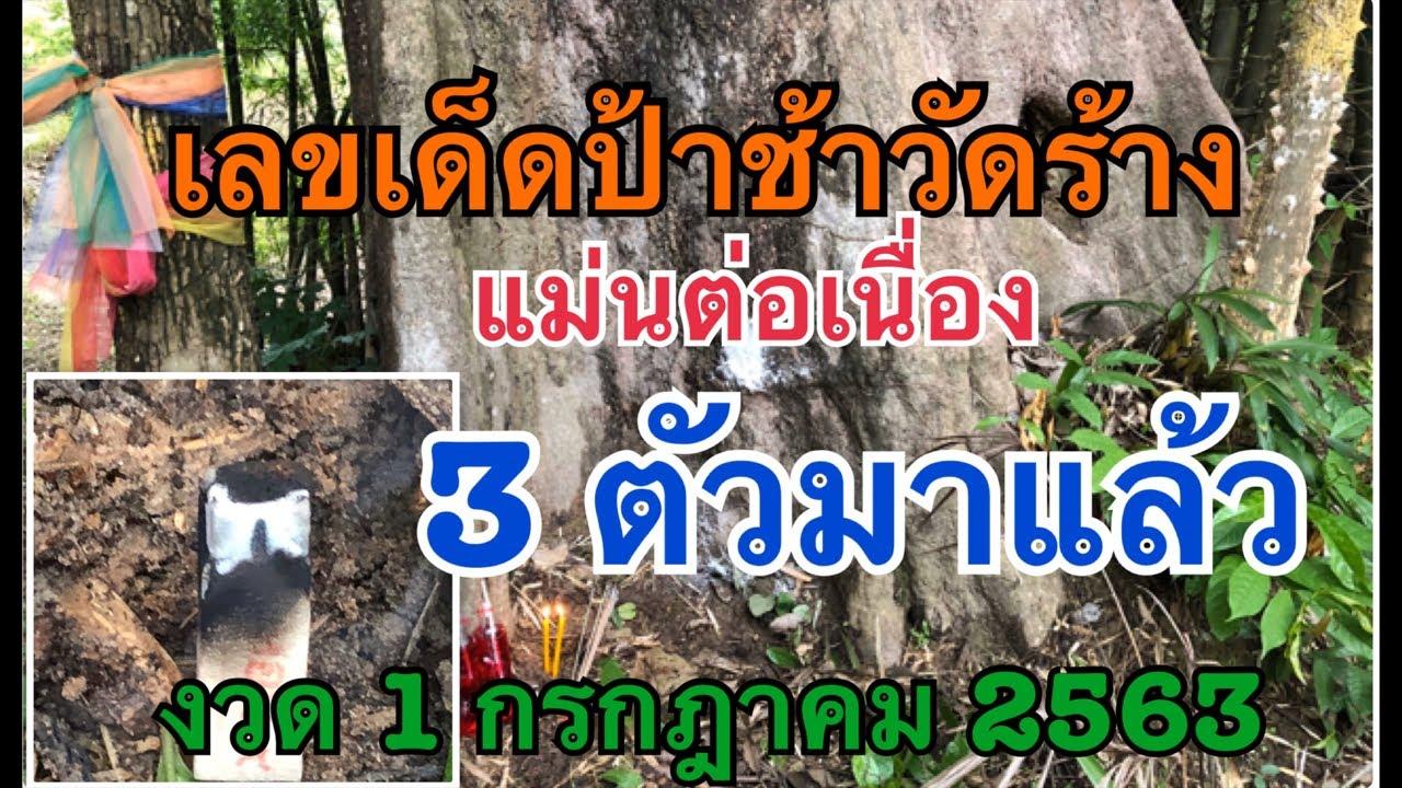 เลขเด็ดป่าช้าวัดร้าง ต้นบกใหญ่ แม่นต่อเนื่อง 3 ตัวโผล่ งวด 1 ก.ค.2563 มาแน่
