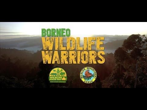 Borneo Wildlife Warriors | Official Trailer [UHD/4K] | SZtv