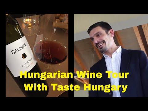 Hungarian Wine Tour Taste Hungary