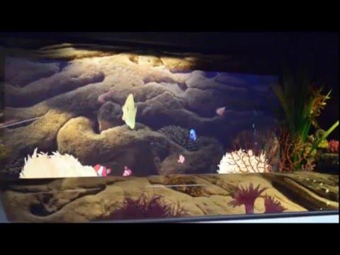 Очаг Dimplex Aqua-V. Видео 1