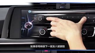 BMW X4 - Programmable Memory Buttons
