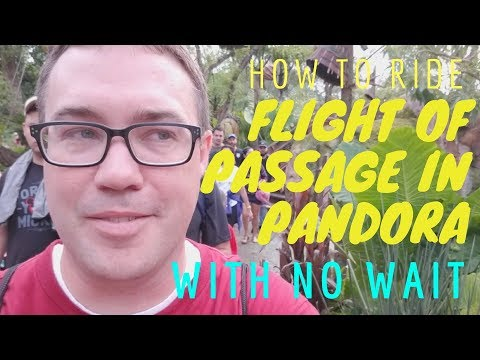 Riding Flight of Passage with No Wait