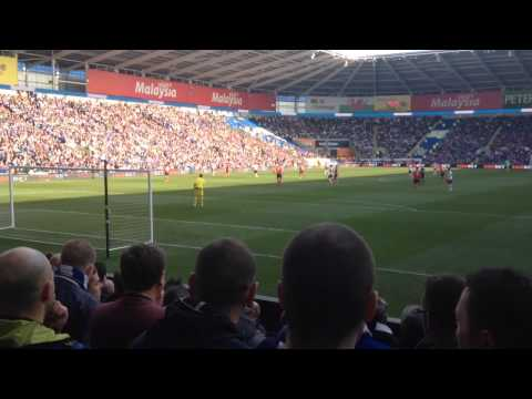 Cardiff City vs Fulham 08/03/2014
