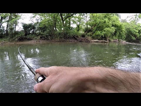 BROOK TROUT Fishing With Crankbait & Spinners