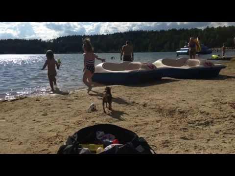 Лето, пляж, собираем чемоданы)))))