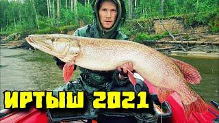 Рыбалка на Иртыше 2021 Трофейные щуки на джиг Снова побил рекорд щука 13 600 гр Часть 1