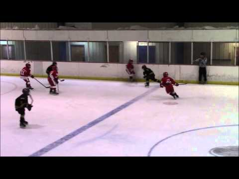 Red Wings at Grizzlies Full Game January 18 2015