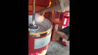 8月23日PASSPO☆大阪バスツアー。動物園にてパッセンジャーさん2人が綿あ...