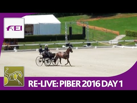 Re-Live | FEI World Championships For Single Driving | Dressage Day 1 | Piber 2016