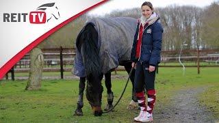 Homestory | Zu Besuch bei REITTV-Teamreiterin Saskia Schneppenheim