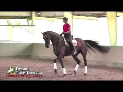Prix St. George, half pass, canter pirouettes with Judge Cesar Torrente