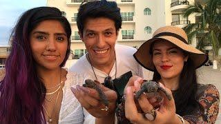 Liberando tortugas EN VIVO!! LOS POLINESIOS