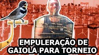 TIPOS DE EMPULERAÇÃO DE COLEIROS PARA TORNEIO | Mago dos Coleiros