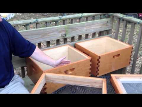 Raising Bees at Home Intro