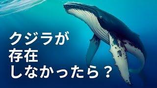 地球上でクジラが存在しなかったらどうなる?