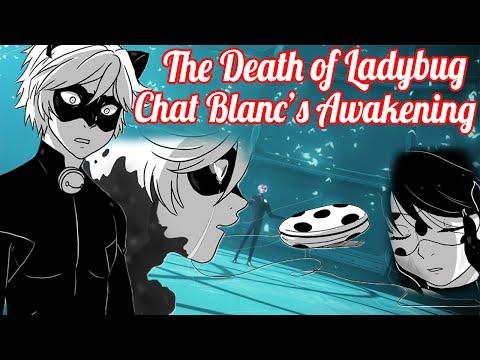 The Death of Ladybug, Chat Blanc's Awakening [Miraculous Ladybug