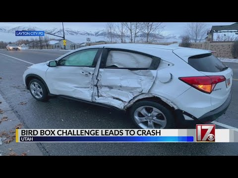 Teen girl crashes during 'Bird Box Challenge' while driving