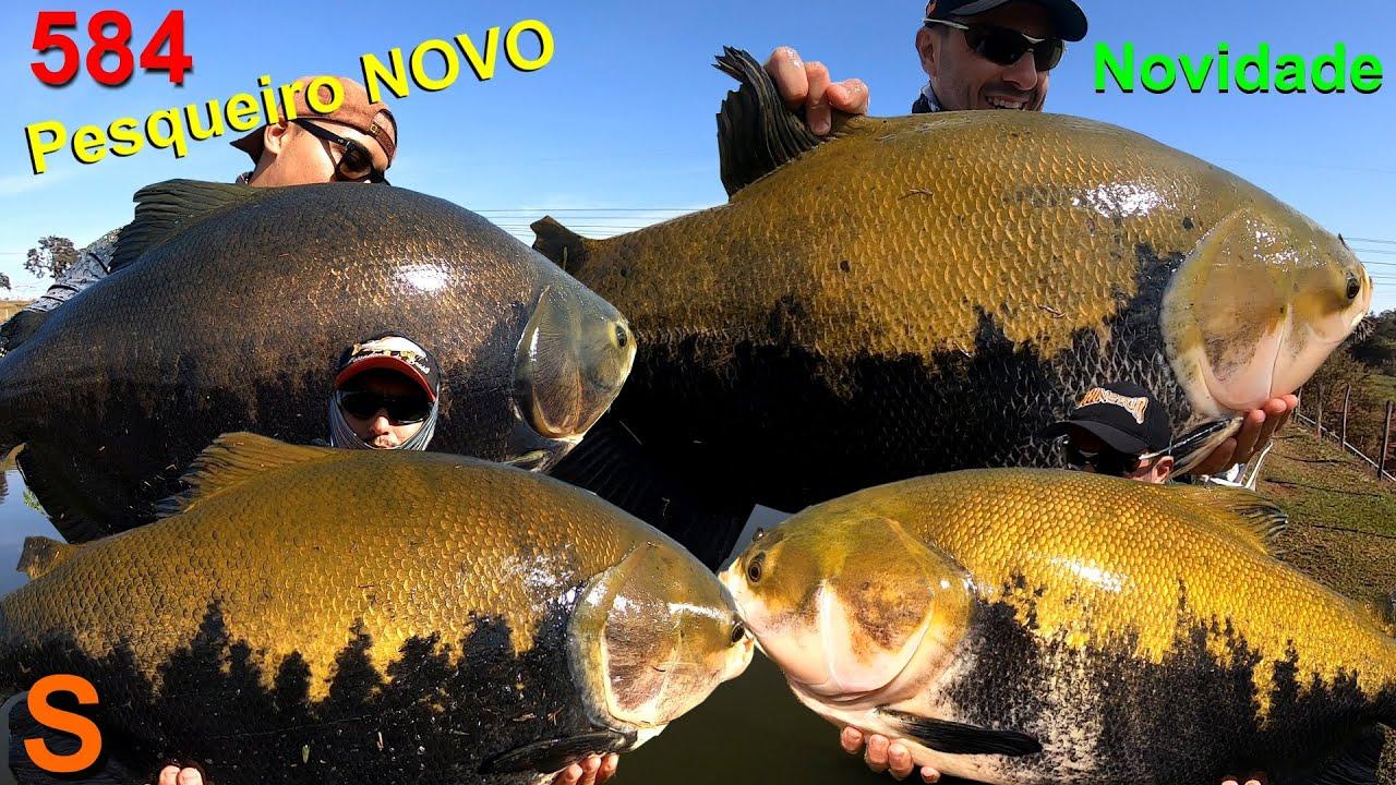 Recanto do S - Surpresas e grandes peixes nesse novo pesqueiro - Programa 584