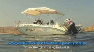 www.bluewaveswatersports.com