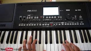 Pankhida O Pankhida ( Piano Instrumental Tutorial ) | Kali Maa Bhajan Dandiya | Pianobajao