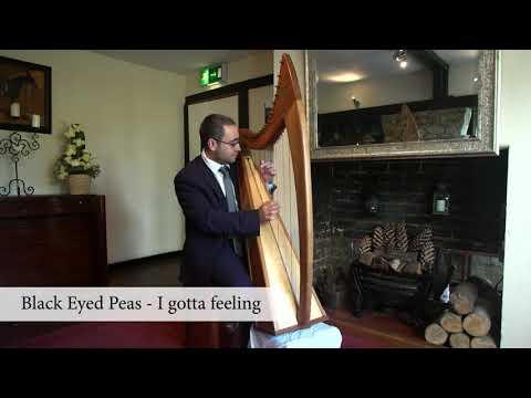 2000s - Mark Levin Harpist
